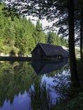 在湖Bajer,克罗地亚的反射 免版税库存照片