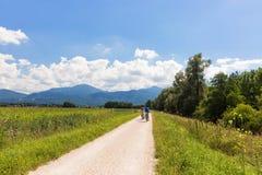 在湖Chiemsee,巴伐利亚,德国附近骑自行车道路 库存图片