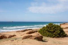 在湖Corission盐水湖的海海滩有砂岩的在科孚岛 库存照片