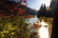 在湖McCloud的秋天 库存照片