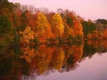 在湖Nockamixon -宾夕法尼亚的被反映的秋天微明 库存图片