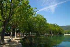 在湖o班约莱斯,西班牙江边的悬铃树  免版税库存照片