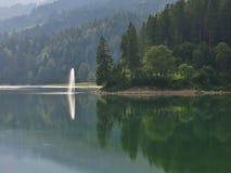 在湖Obersee的喷口 库存照片