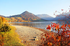 在湖schliersee的金黄10月,德国 库存照片
