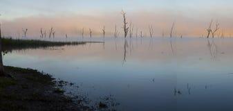 在湖Tinaroo的桃红色早晨 库存图片