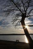 在湖Weatherford的长凳 库存照片
