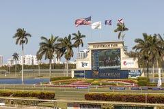 在湾流公园,佛罗里达的赛马场 库存照片