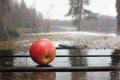 在湿委员会的苹果计算机以为背景前面 库存照片