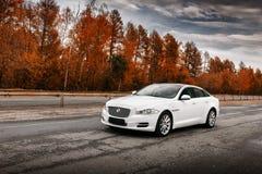 在湿柏油路的白色捷豹汽车XJ汽车立场在白天 免版税库存照片