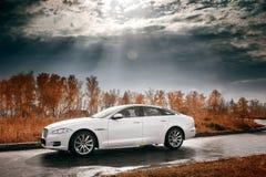 在湿柏油路的白色汽车逗留 免版税库存图片