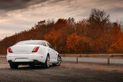 在湿柏油路的白色汽车逗留 库存图片