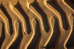在湿沙子的压印的足迹挖掘机轨道 沙子纹理 免版税库存图片