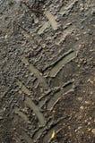 在湿泥的轮胎轨道 免版税库存图片