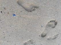 在湿海滩沙子的家庭脚印 库存图片