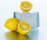 在湿表面的柠檬 库存照片