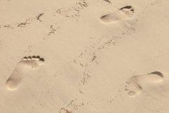 在湿黄沙的人脚印在海滩 库存照片
