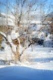 在湿玻璃后的背景庭院 免版税库存照片
