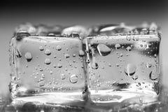 在湿玻璃桌上的色的冰块 选择聚焦 库存图片
