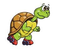 在溜冰鞋2的乌龟 免版税库存照片