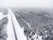 在溜滑冬天路线的鸟瞰图在阴暗北方针叶林的是在俄罗斯北部 免版税库存照片
