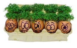 在滑稽的手工制造复活节彩蛋,害怕,吓唬,惊奇 免版税库存图片