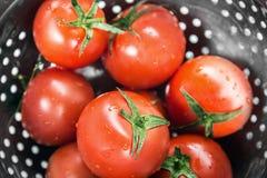 在滤锅洗涤的蕃茄新收获 库存图片