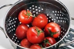 在滤锅洗涤的蕃茄新收获 免版税图库摄影