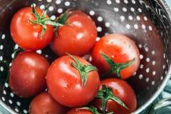 在滤锅洗涤的蕃茄新收获 免版税库存照片
