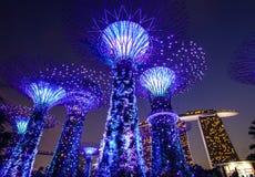 在滨海湾公园的Supertree在新加坡 库存图片