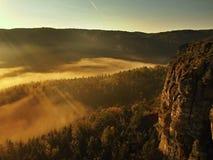 在漂泊萨克森瑞士的一座美丽的山的日出。砂岩峰顶和小山从有雾的背景增加了 免版税库存图片