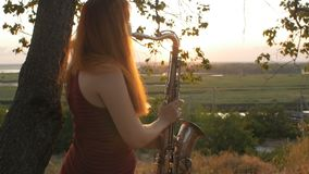 在演奏saxophoneon自然,妇女的日落年轻美丽的红发女孩的剪影吹入管子,概念爱好,mus 股票视频