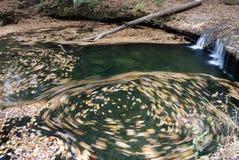 在漩涡水附近的秋天 图库摄影