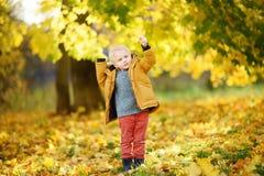 在漫步期间的小男孩在森林里晴朗的秋天天 免版税库存图片