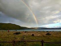 在潘恩重创的露营地的彩虹 库存图片
