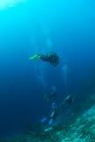 在潜水员礁石之上 免版税库存图片