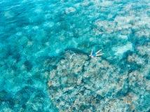 在潜航在珊瑚礁热带加勒比海,土耳其玉色水的人下的空中上面 印度尼西亚Wakatobi群岛, 图库摄影