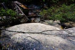 在澳大利亚布什的瀑布 免版税图库摄影