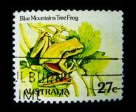 在澳大利亚打印的邮票显示一只蓝色山雨蛙的图象在价值的在27分 免版税库存图片