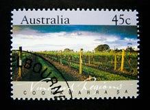 在澳大利亚打印的邮票显示在澳大利亚展示打印的一张imageA邮票Coonawarra葡萄园地区的图象, SA 免版税库存图片