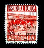 在澳大利亚打印的邮票显示种田的母牛的图象,牛奶生产产业 免版税库存图片