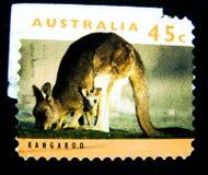 在澳大利亚打印的邮票显示红色袋鼠的图象与婴孩的价值的在45分 图库摄影