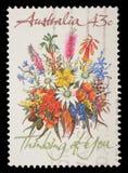 在澳大利亚打印的邮票显示花 库存照片