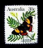 在澳大利亚打印的邮票显示Chlorinda在价值的翅上有细纹的蝶蝴蝶的图象在30分 图库摄影