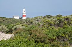 在澳大利亚海岸线的灯塔 库存照片