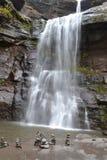 在瀑布前面的艺术 库存图片
