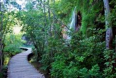 在瀑布旁边的木路 免版税库存照片