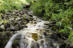 在瀑布春天冷却的啤酒 图库摄影