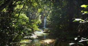 在瀑布的看法在Samanà ¡的Salto Limà ³ n附近在多米尼加共和国的Repub 免版税图库摄影