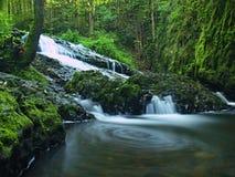 在瀑布的被弄脏的水充分水。   免版税图库摄影