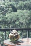 在瀑布背景的年轻新鲜的有机椰子在巴厘岛密林  库存照片